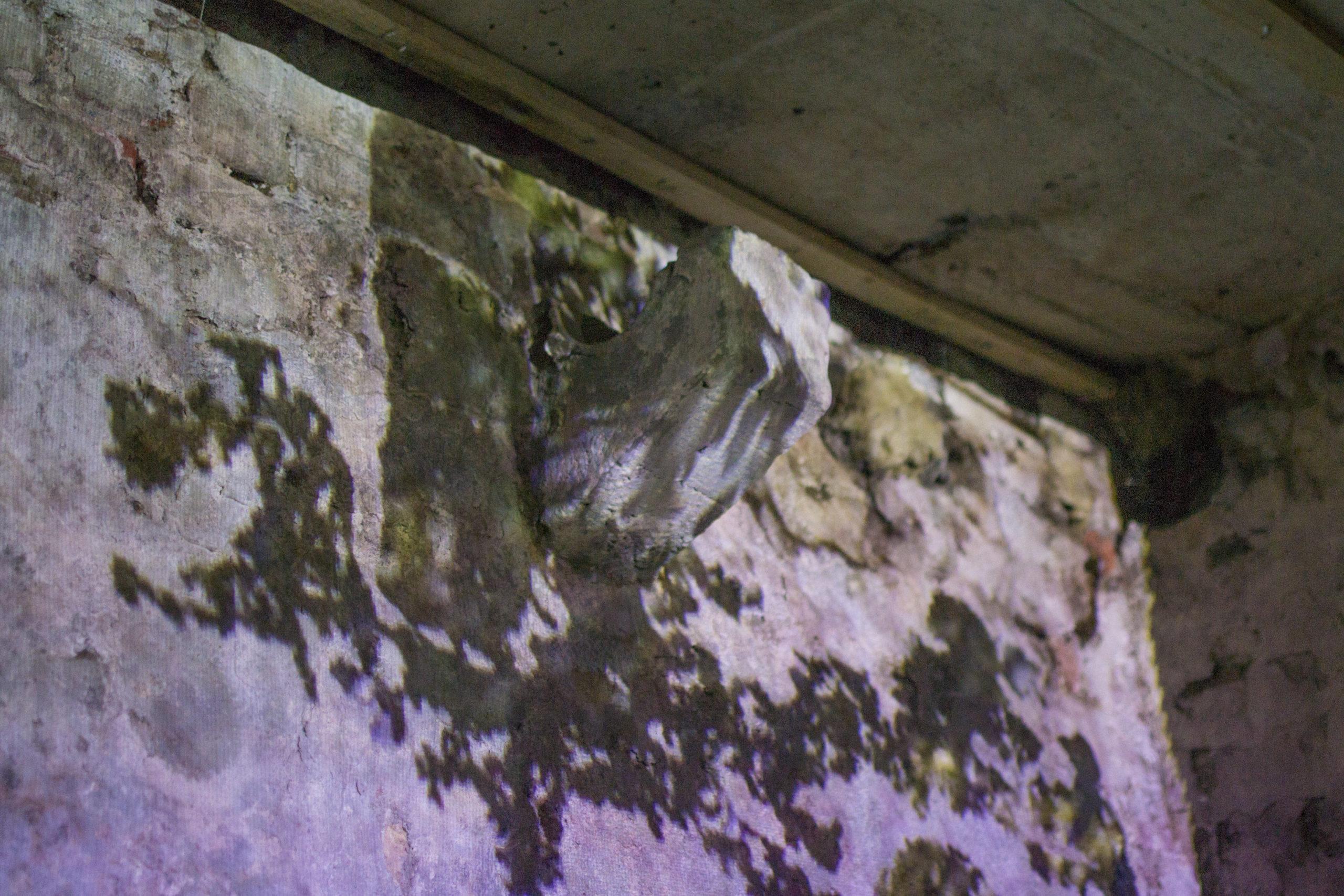 Superette Cave